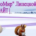 topecomirnewyear (2)
