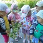 Дошкольники из МБДОУ детский сад Непоседа г.Усмани