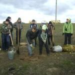 мастер-класс волонтёров Гринпис по посадке саженцев